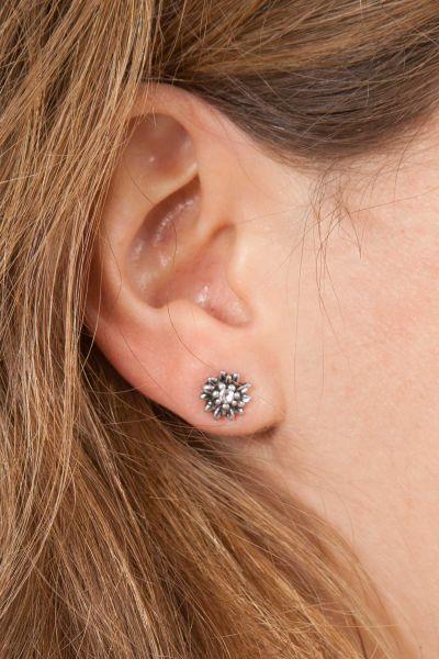 Trachten Ohrringe Edelweiss als Ohrstecker in silber Model